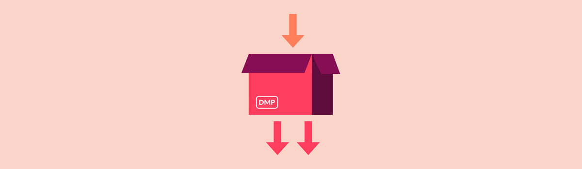 How Does Audience Segmentation in a DMP Work?