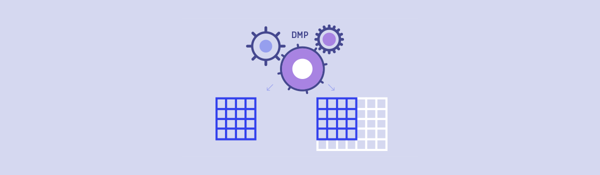 Segmentation Methods in a DMP: Live or Fixed?